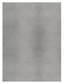 Пластины - «X Plane Арт. K2838ZM600010 - Grey rec»